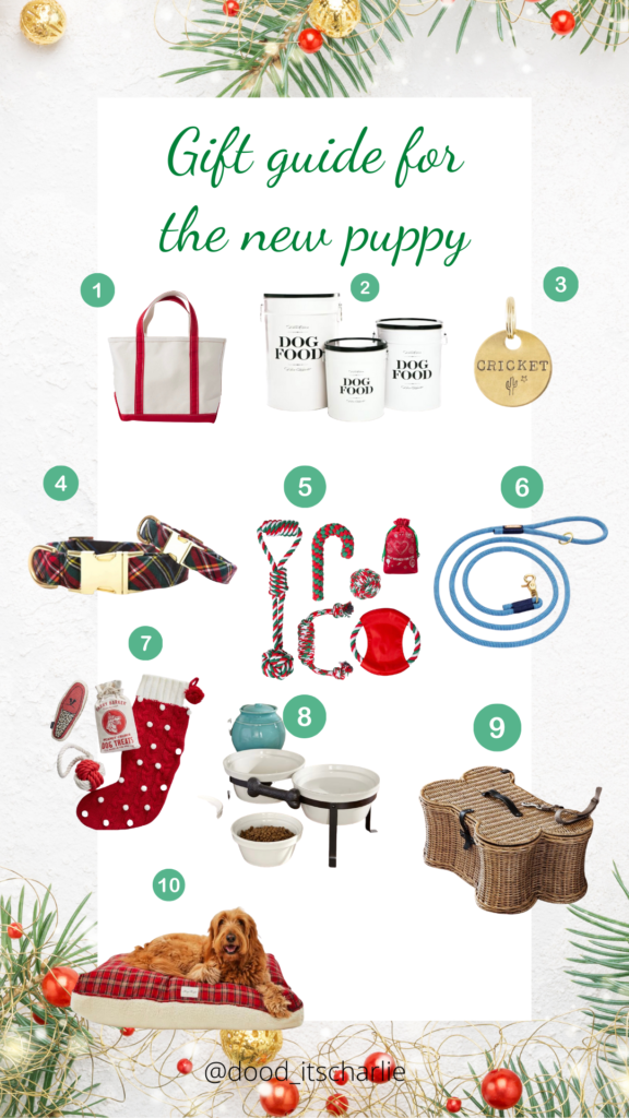 Gift Guide For The New Puppy Dood It S Charlie Jess